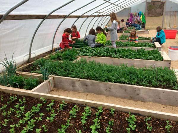 enseñar agricultura 4