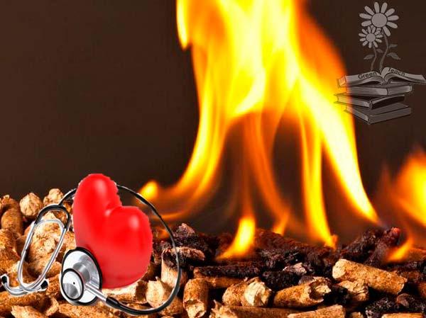 quema de biomasa portada