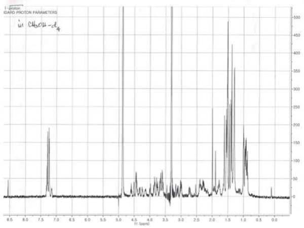 Emericellopsis minima grafico 2
