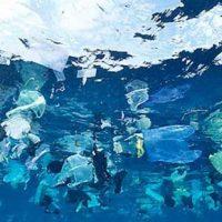 trozos de plástico 1