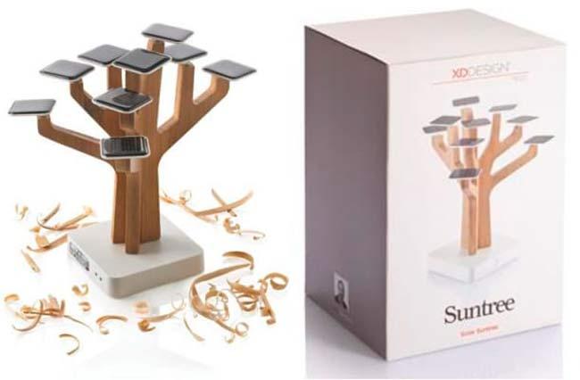 Suntree 4