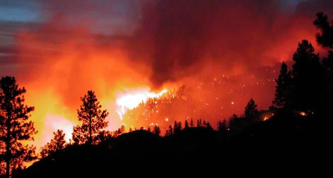 consecuencias de los incenios forestales 2