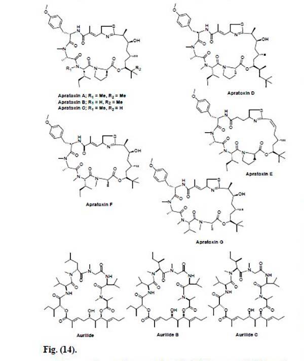 péptidos marinos Figura 14