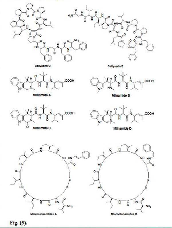 péptidos marinos Figura 5