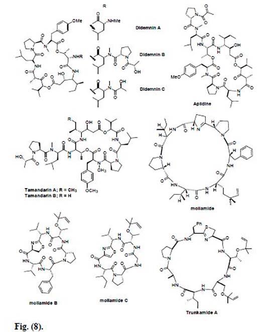 péptidos marinos Figura 8