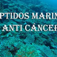 péptidos marinos portada