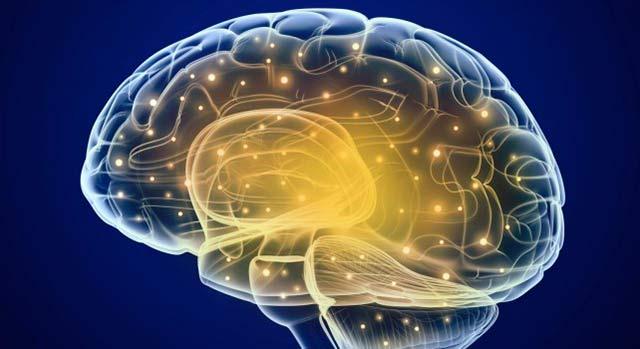 parar y revertir el Parkinson y el Alzheimer