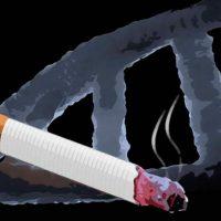 tabaco deja huella en el ADN