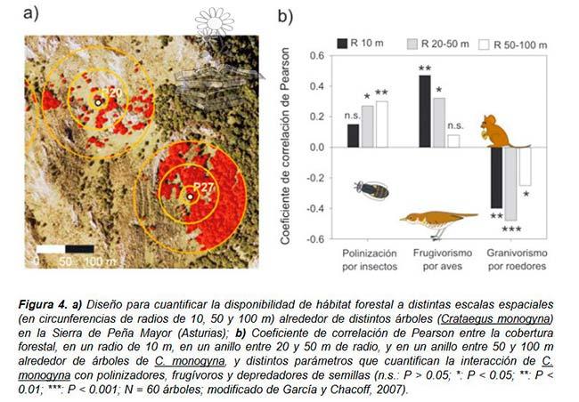 análisis fragmentación hábitat