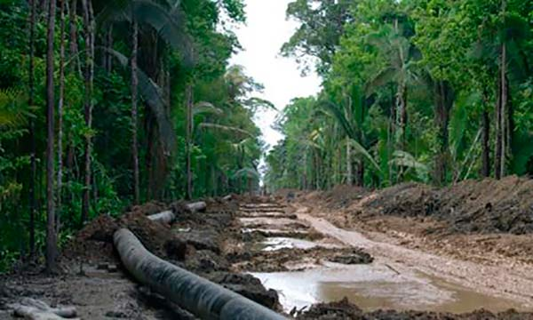 deforestación Amazonias