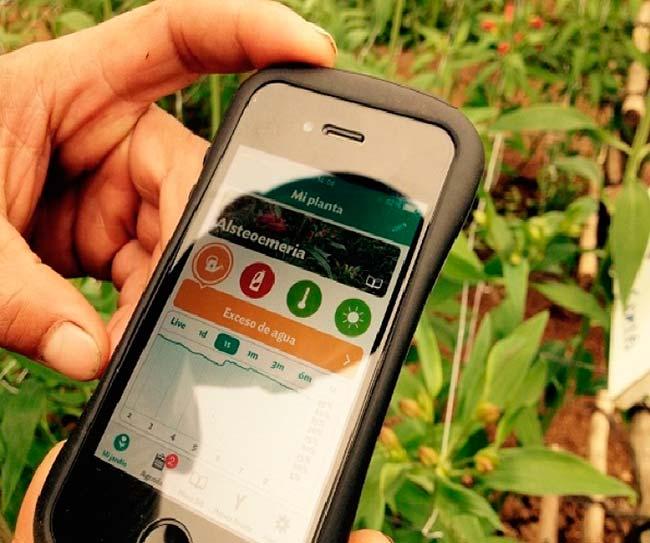 app sensores plantas