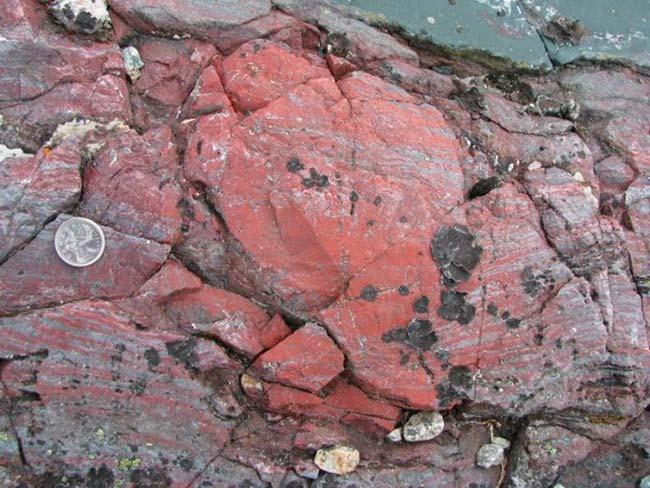 huellas primeros microorganismos en rocas grafito