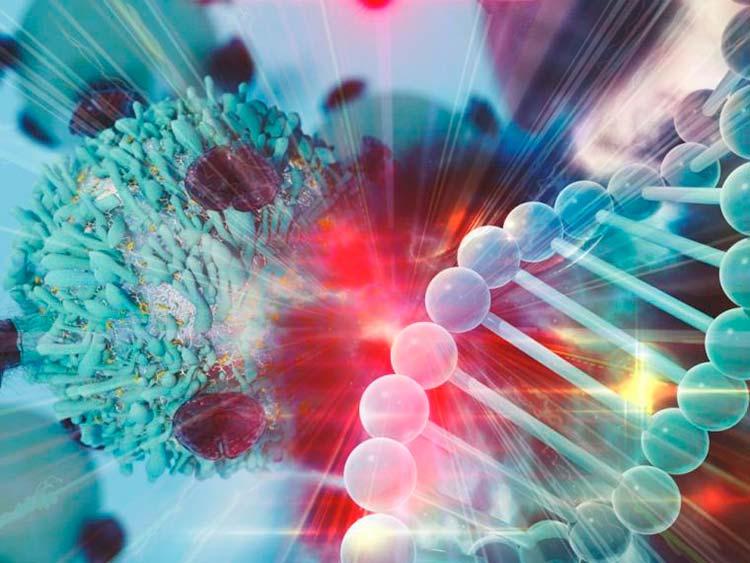 cromatina Portada