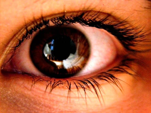ojo marrón