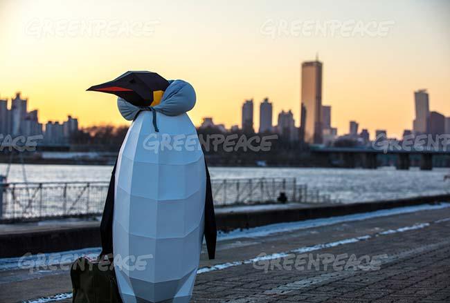 marcha de los pingüinos Greenpeace