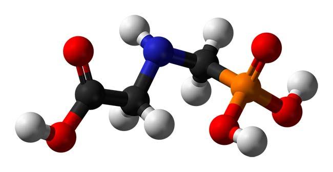 molécula hidrocarburo