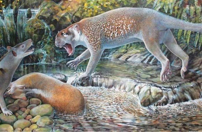 león marsupial extinto Portada