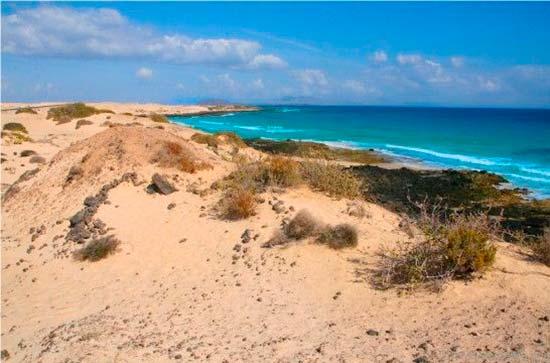 dunas de Canarias