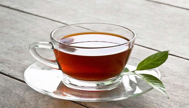 té camelia sinensis