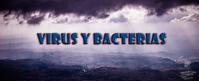virus y bacterias caen del cielo Portada