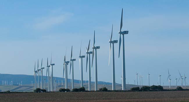 parque eolico de Cadiz (España)