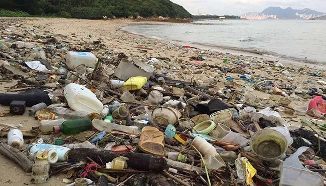 playa Hawai contaminacion plasticos