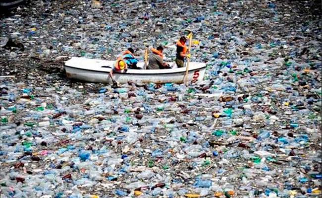 isla de basura google maps