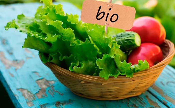 Alimentos Ecológicos, Ventajas e Inconvenientes