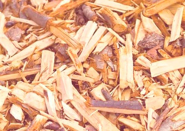 biomasa de madera
