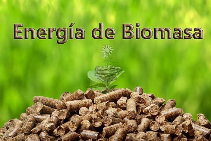 Bioenergía o energía de la biomasa, una energía renovable pero no limpia