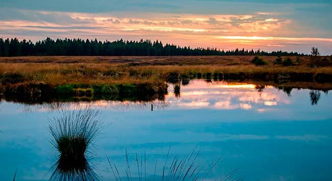 Living Lakes 2019