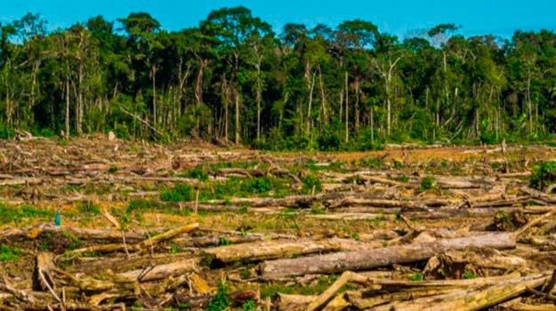 10 causas del calentamiento global