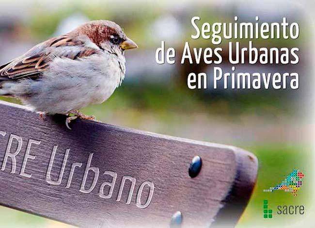 seguimiento de aves como indicador de biodiversidad
