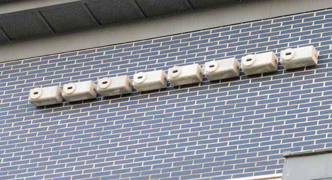 Nidales para vencejo en edificio Instituto de Cantabria