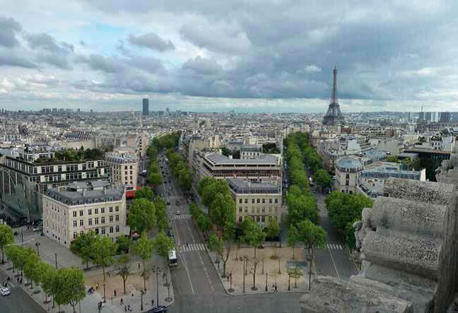Paris sin diversidad arborea