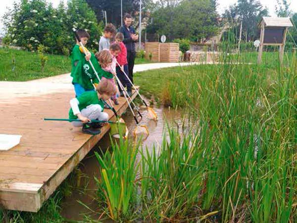 naturalizar las aulas deEducacion Ambiental