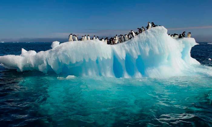 aumento de la temperatura en los oceanos Portada