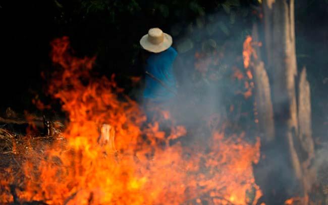 causas incendios del Amazonas