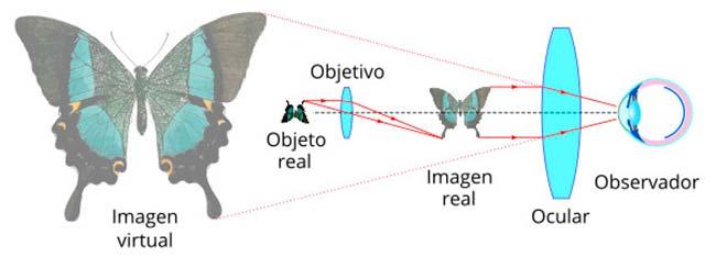 microscopio optico funcionamiento