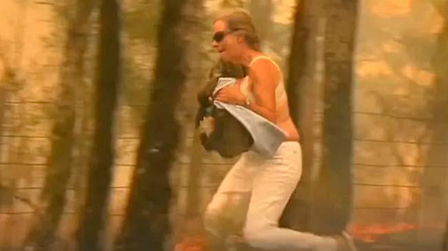 viral mujer rescata Koala incendio