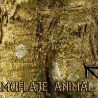 camuflaje animal portada