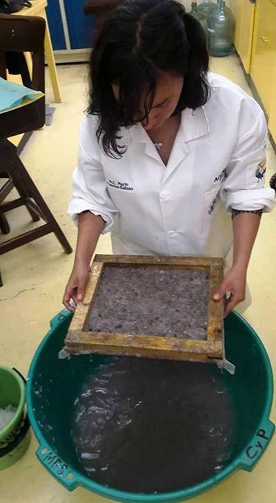 fabricacion de plato con fibra de coco
