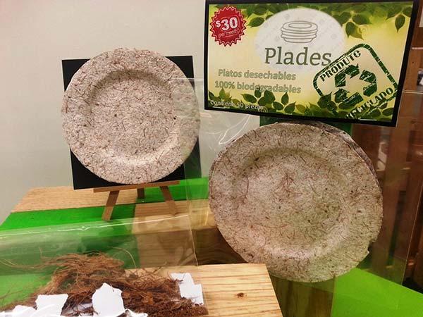 platos desechables de fibra de coco