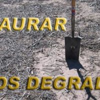 restaurar suelos degradados portada