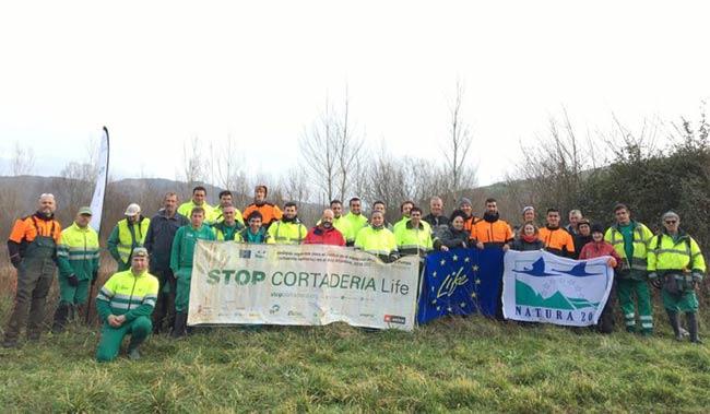 proyecto Life Stop Cortaderia