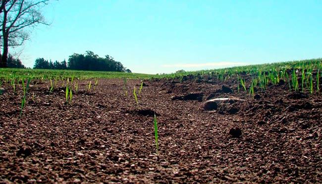 usos del suelo rural