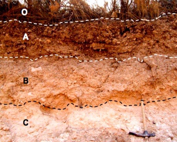 estructura del suelo pdf