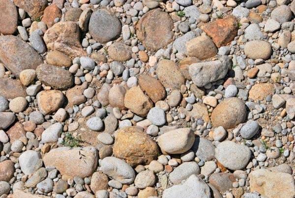 4 tipos de suelos