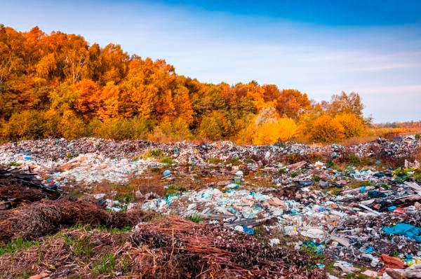contaminacion de suelos consecuencias