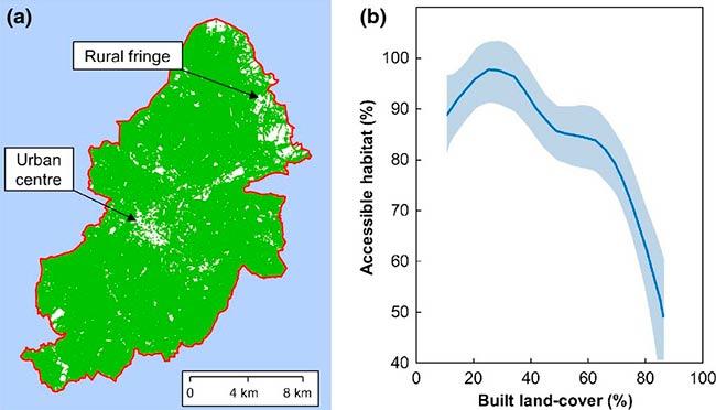 impacto ecologico de la luz artificial en accesibilidad a areas murcielagos